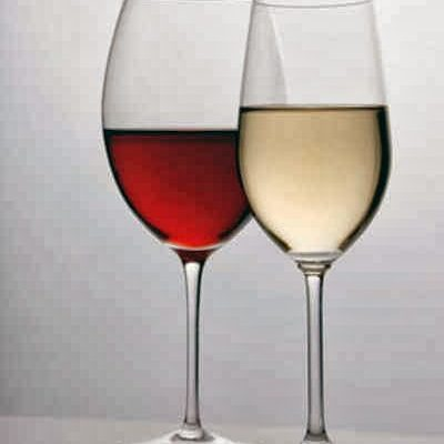 Gelas wine Polycarbonate 021-7873562  – 081316770888
